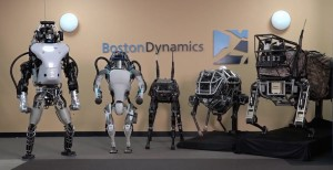 robots-boston